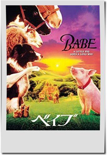 親子で観たい動物映画ランキング第4位ベイブ