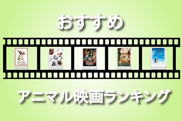 親子鑑賞におすすめ!動物映画ランキングベスト10@王様のブランチ